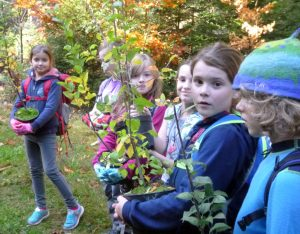Schülerinnen und Schüler der Jahrgangsstufen 3/4 pflanzen Obstbäume in Ilmenau-Roda.